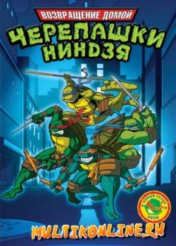 Черепашки мутанты ниндзя - Новые приключения! (2003)