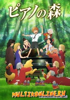 Рояль в лесу. Фильм (2007)