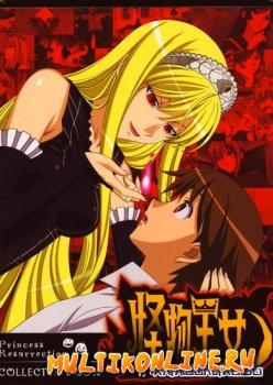 Принцесса чудовищ OVA (2010)