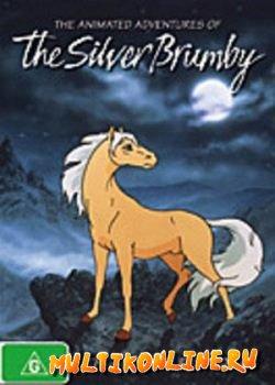 Серебряный конь 1998
