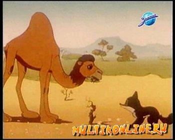 Шакаленок и верблюд (1956)