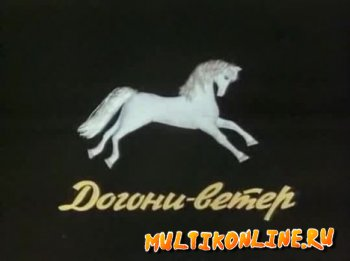 Догони-ветер (1978)