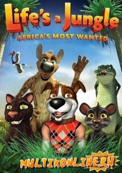 Жизнь в джунглях: Особо опасные в Африке (2012)
