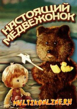 Настоящий медвежонок (1977)
