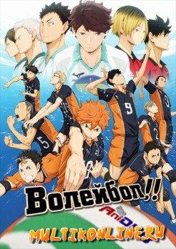 Волейбол!! 1 сезон (2014)