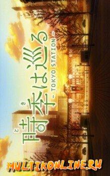 К столетию станции токио (2014)