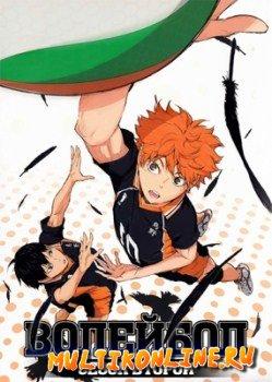 Волейбол!! 2 сезон (2015)