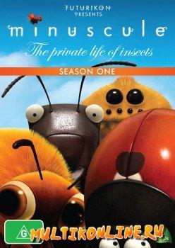 Букашки 1 сезон (2006)